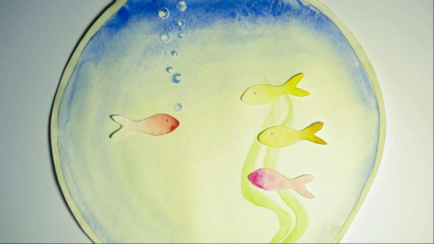 Platons Aquarium